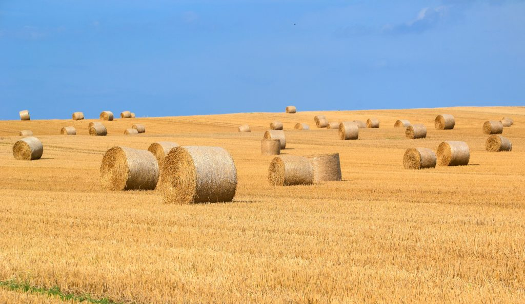 agriculture arable bale countryside 289334 1024x592