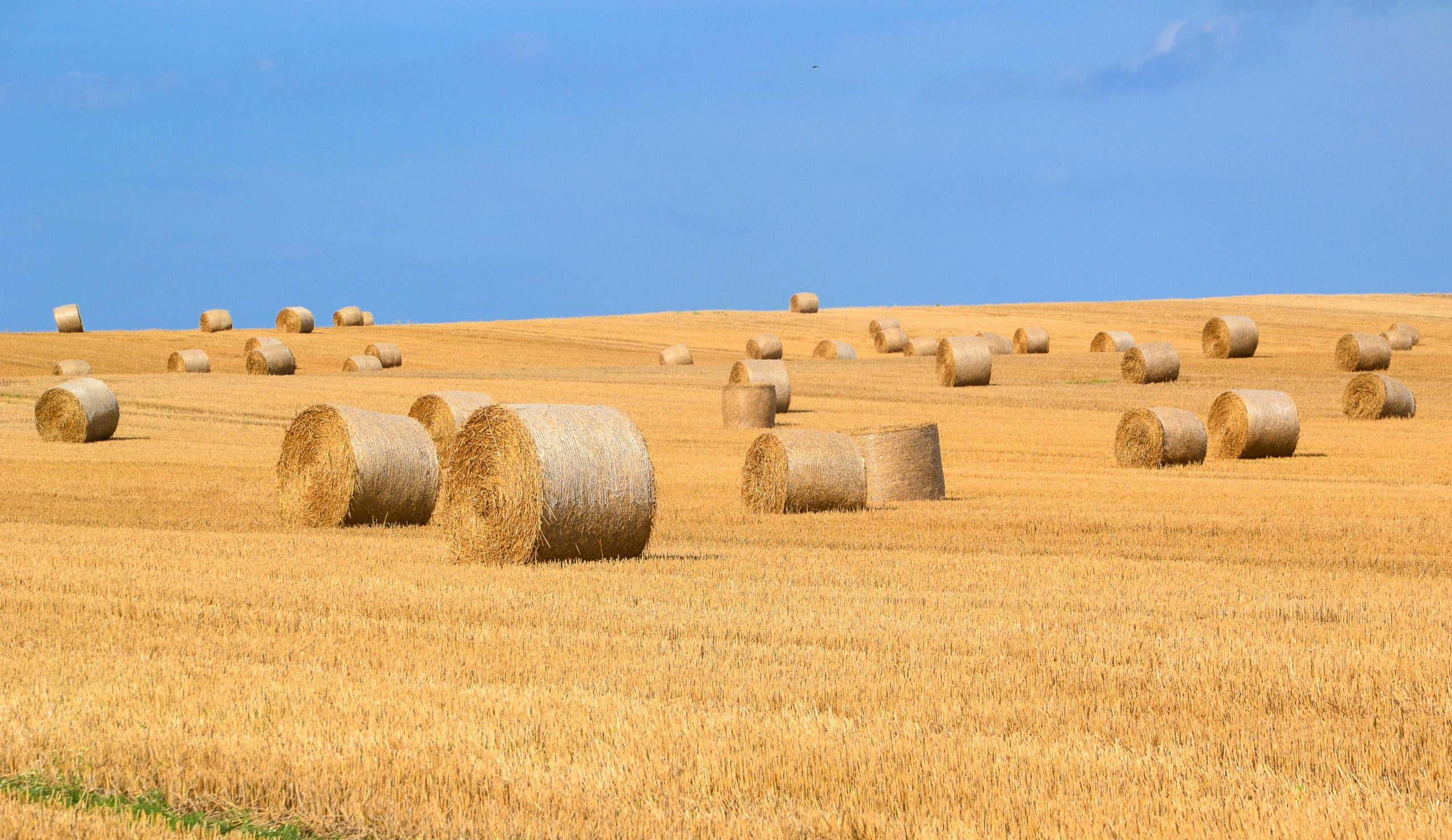 agriculture arable bale countryside 289334 scaled
